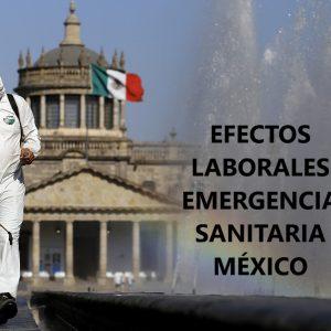 EFECTOS LABORALES DE LA DECLARATORIA DE EMERGENCIA SANITARIA. LEX PRO HUMANITAS