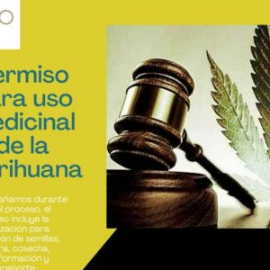 ¿Requieres marihuana para uso medicinal? En Lex Pro te ayudamos a hacerlo de manera legal.